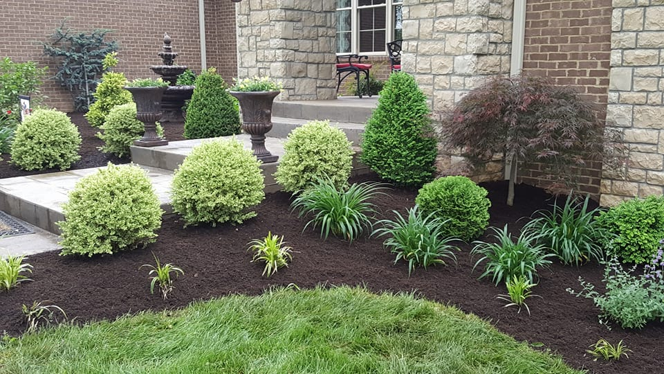 Sharp Lawn Lexington, KY Landscaping